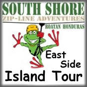 East Side Island Tour