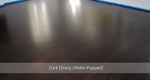 Dark Ebony Stained Wood Floor