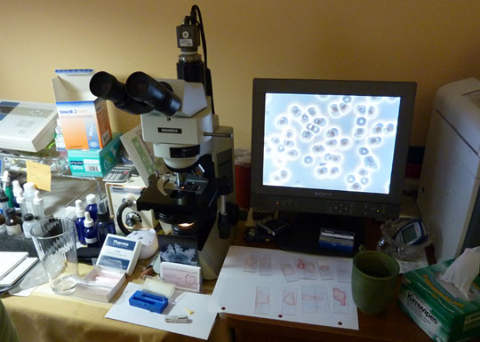 live blood microscope