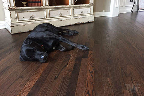Dark Stained Oak Hardwood Floor