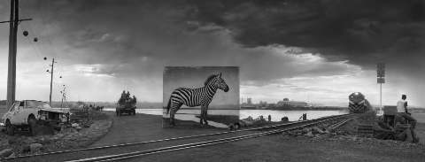 Nick Brandt / road-to-factory-with-zebra
