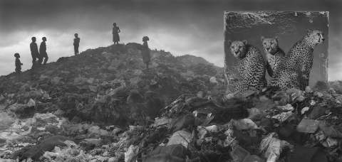 NICK BRANDT / WASTELAND WITH CHEETAHS & CHILDREN